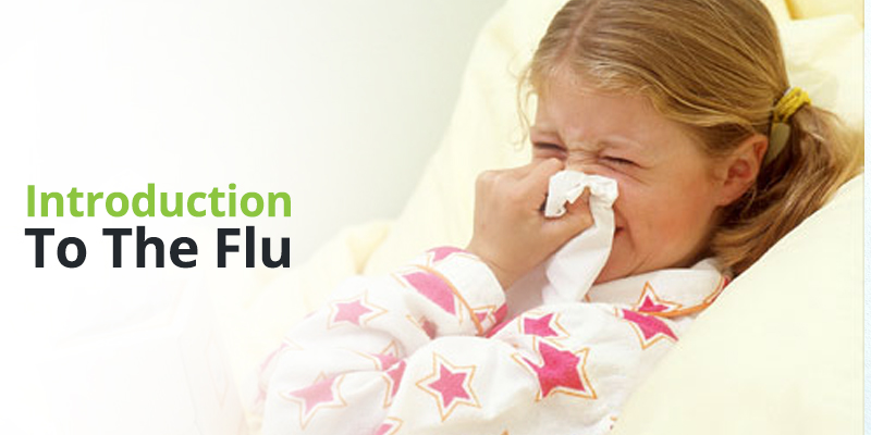 Introduction to the Flu