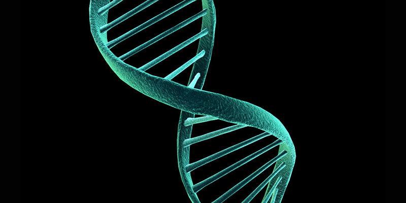 Is Your Child at Risk for Epigenetic Change?